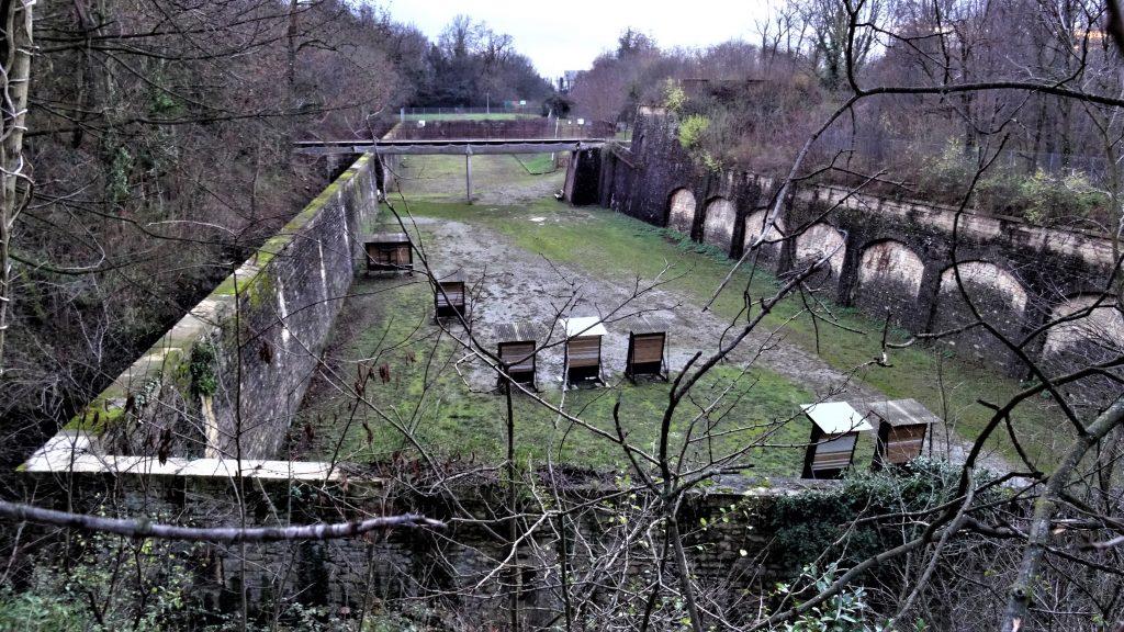 Des fossés secs entourent le Fort de Bron. Murs d'escarpe et de contre-escarpe bordent les fossés.