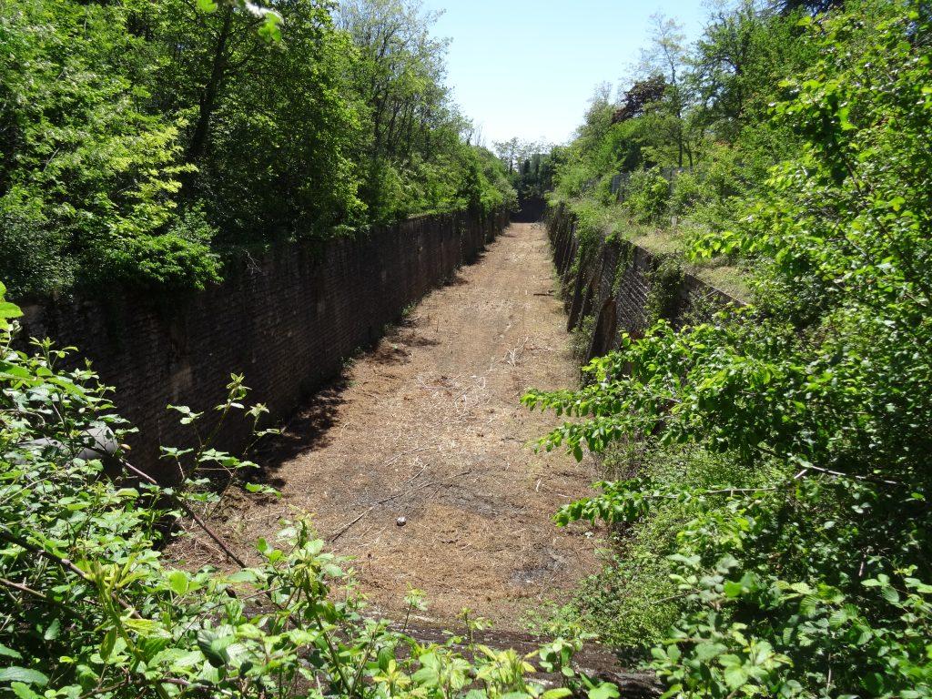 """Fossé est du Fort de Bron coté """"Veolia"""" (mai 2019) : les fossés ont été nettoyés."""