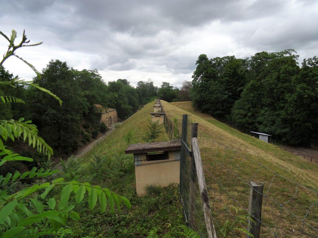 Dessus du Parados du Fort de Bron recouvrant les casemates logements.